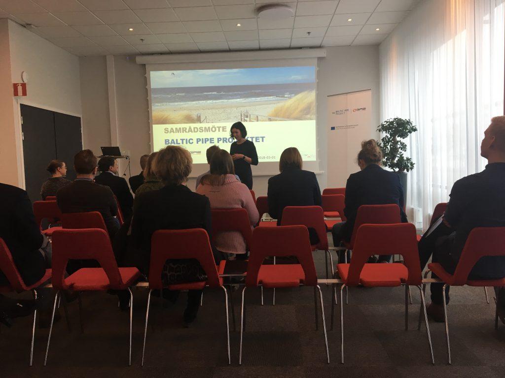 Public hearing in Malmø 3